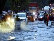 Orange alert: IMD forecasts heavy rains in Telangana, urge people to restrict movement