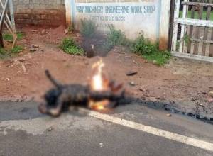 Truck driver's charred body sent shivers across Vizag city