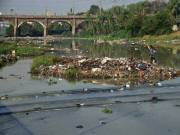 National Green Tribunal forms committee to monitor Musi river clean-up