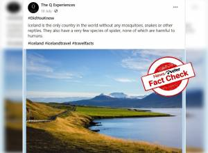 Fact Check: Iceland not the only country without mosquitoes