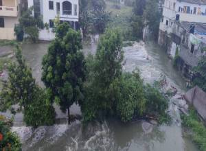 Hyderabad Rains 2020: City pounded, 20540 houses affected