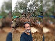 Go Green: NGO offers solution to revive fallen trees