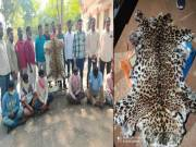 6 held for killing leopard, trying to sell skin