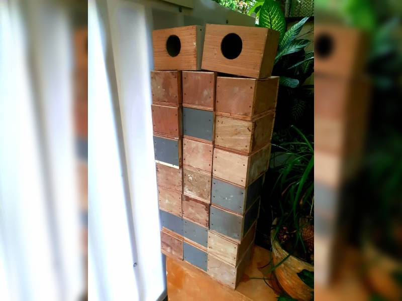 Saving sparrows: Sai baba officers residents create nesting boxes to save birds from extinction